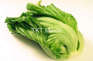 chọn rau cải ngon để muối dưa