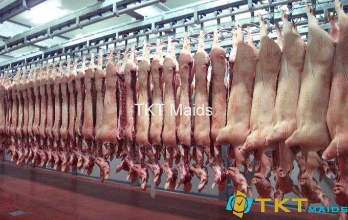 giết mổ tại nhà máy thịt mát