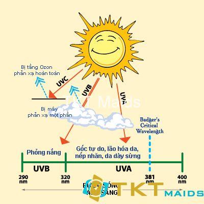 ảnh hưởng của tia UV đối với sức khỏe con người