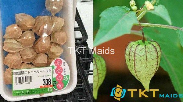 rau dại Việt Nam bán có trên thế giới